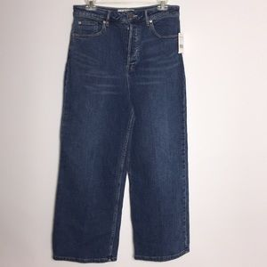 NWT Free People jeans button fly  (B14-3)